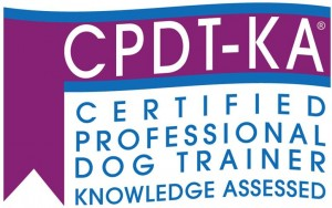 CCPDT CEU approved courses