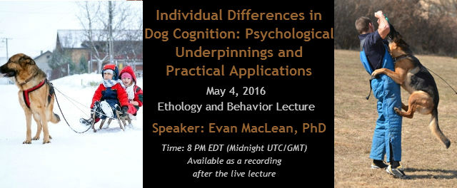 Individual Differences in Dog Cognition