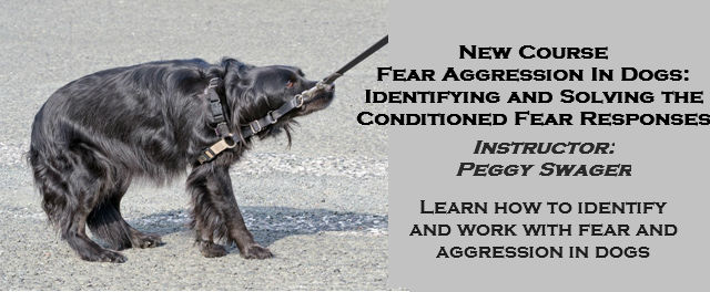 FearAggression-cfr