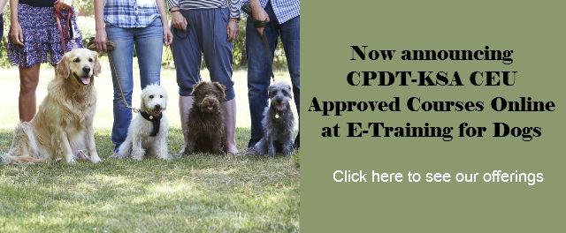 CPDT-KSA CEU Courses